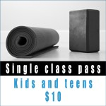 Single-class-pass-kids