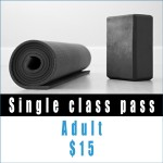 Single-class-pass