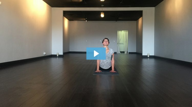 [VIDEO] Gina Owns Upward Facing Dog